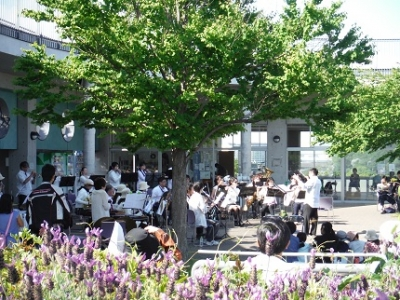 本牧の風コンサート