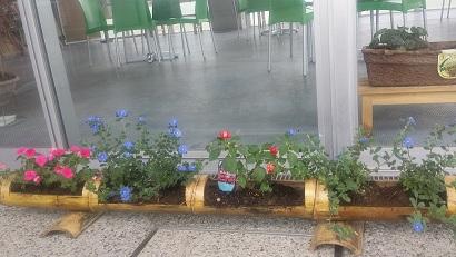 竹の植木鉢