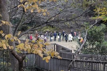 夢見る力を公園で